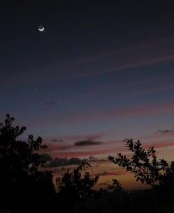 moon and mercury tobabo